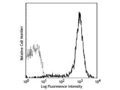 Mouse Anti-MHC Class 1, H2, KK Antibody