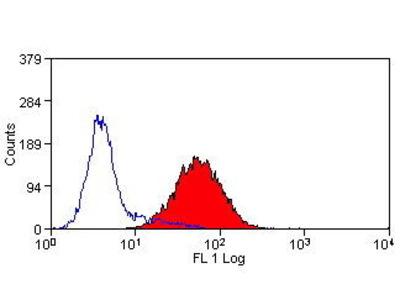 Mab Mo x human CD205 (DEC205) antibody