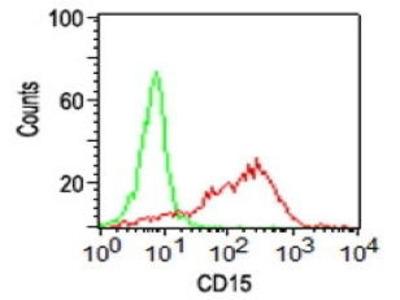 Mouse Anti-CD15 Antibody