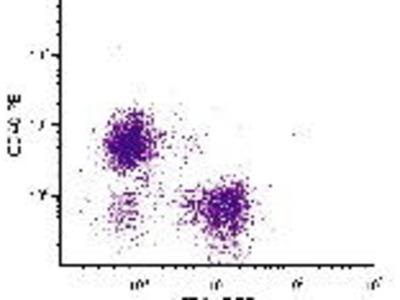 Mab Rt x mouse CD40 (TNFRSF5, Bp50) (PE) antibody