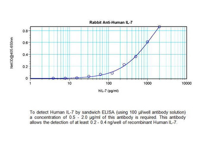 Rabbit Anti-IL-7 Antibody