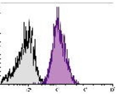 Mouse Anti-CD49b Antibody