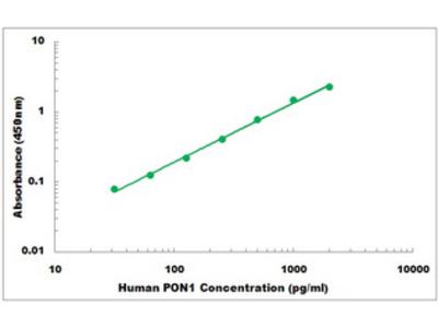 Human PON1 ELISA Kit