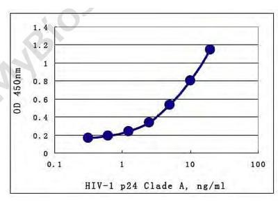 Elite p24 (HIV-1/Clade A) ELISA Assay Kit