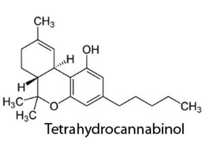 THC mAb1