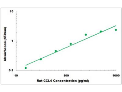 Rat CCL4 ELISA Kit