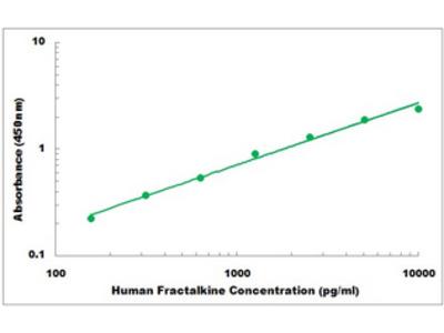 Human Fractalkine ELISA Kit