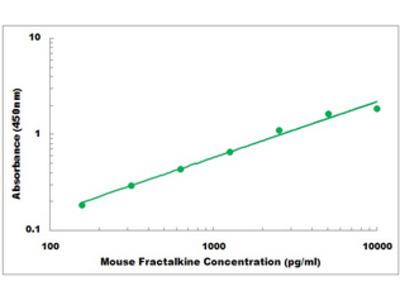 Mouse Fractalkine ELISA Kit
