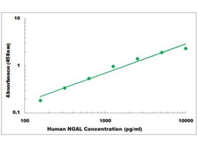 Human NGAL ELISA Kit