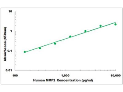 Human MMP2 ELISA Kit