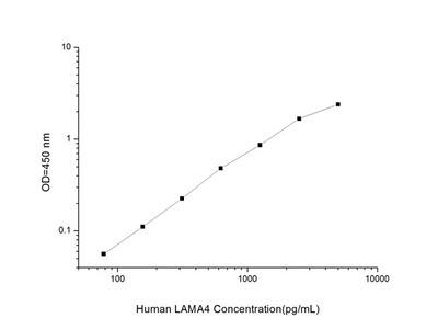 Human LAMA4(Laminin Alpha 4)ELISA Kit