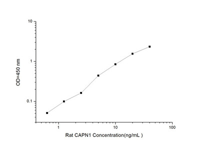 Rat CAPN1(calpain 1) ELISA Kit