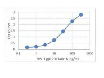 Elite gp120 (HIV-1/Clade B) ELISA Assay Kit
