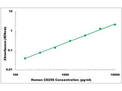 Human CD256 ELISA Kit