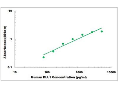 Human DLL1 ELISA Kit