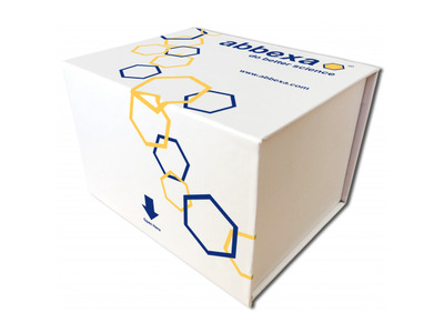 Cow Bcl2 Associated X Protein (BAX) ELISA Kit