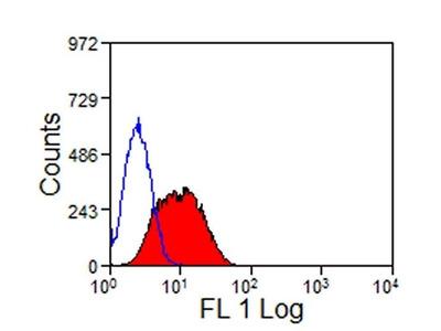 Anti-TIM-3 antibody [RMT3-23] (FITC)