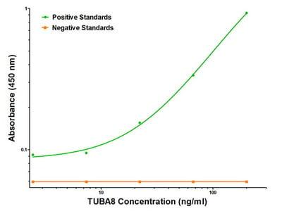 Luminex and ELISA validated purified TUBA8 mouse monoclonal antibody, clone OTI2G6