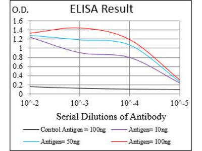 anti-Protein Phosphatase 1, Regulatory (Inhibitor) Subunit 1B (PPP1R1B) (AA 95-204) antibody