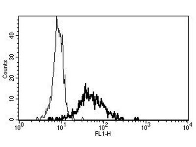 anti-Alanyl (Membrane) Aminopeptidase (ANPEP) antibody