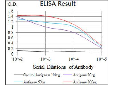 anti-PAX3 (pax3a) antibody