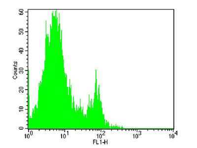 anti-FCGR2B (FCGR2) antibody