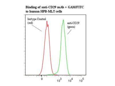 anti-human CD29-Pur/PF