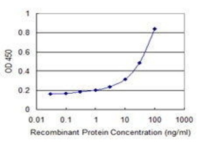 Mouse Anti-TNRC6B Antibody