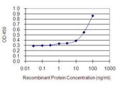 Mouse Anti-MYO1E Antibody