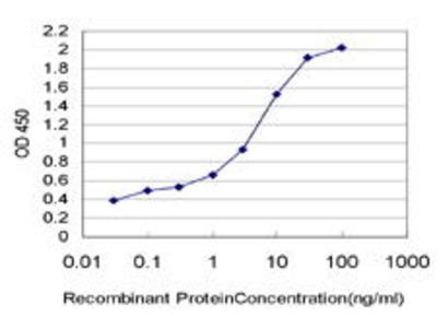 Mouse Anti-HELZ Antibody