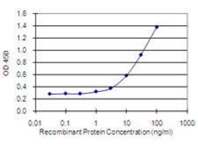 Mouse Anti-HAGHL Antibody