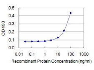 Mouse Anti-IVNS1ABP Antibody