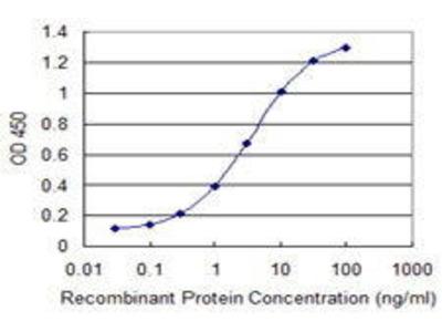 Mouse Anti-A1BG Antibody