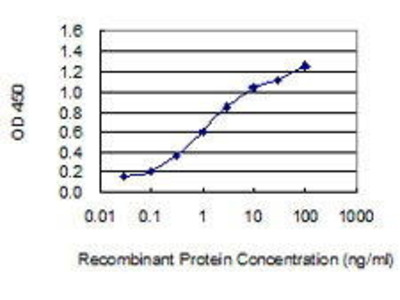 Mouse Anti-PTPN14 Antibody
