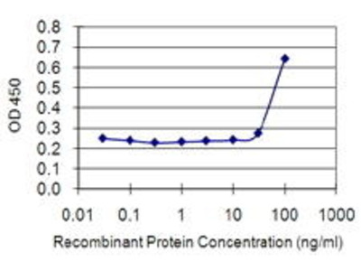 Mouse Anti-ETV3 Antibody