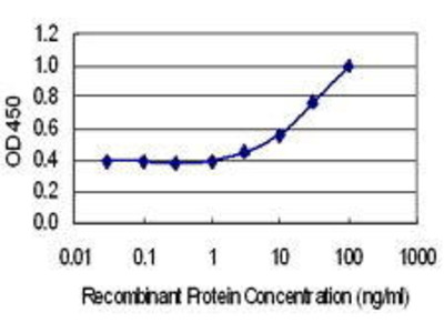 Mouse Anti-TTC9C Antibody