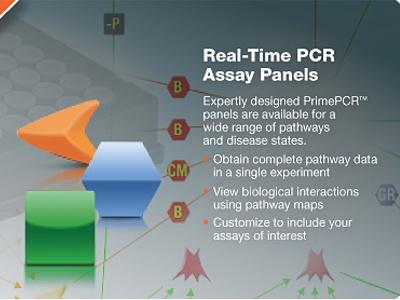 Bio-Rad PrimePCR™ Arrays: Disease and Pathway Plates