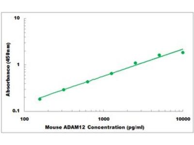 Mouse ADAM12 ELISA Kit