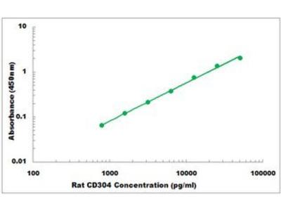 Rat CD304 ELISA Kit