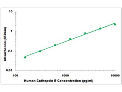 Human Cathepsin E ELISA Kit