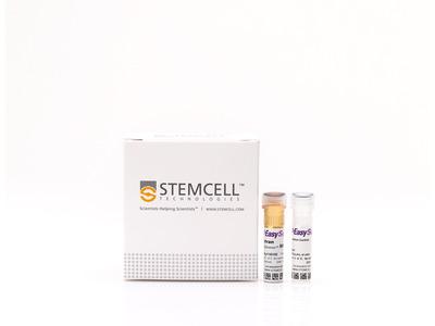 EasySep™ Rat CD4+ T Cell Isolation Kit