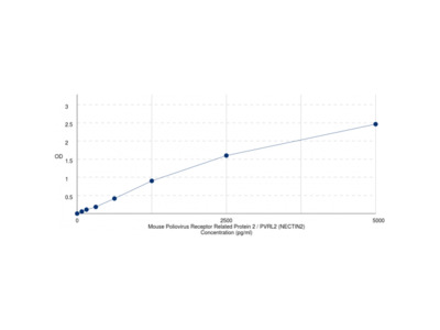 Mouse Poliovirus Receptor Related Protein 2 / PVRL2 (NECTIN2) ELISA Kit
