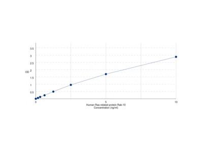 Human Ras-related protein Rab-10 (RAB10) ELISA Kit