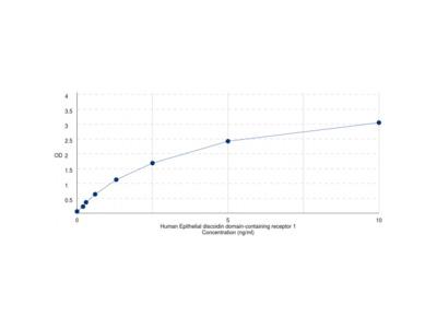 Human Epithelial Discoidin Domain-Containing Receptor 1 (DDR1) ELISA Kit