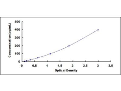 Angiopoietin Like Protein 2 (ANGPTL2) ELISA Kit