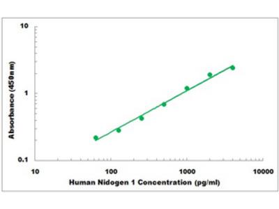 Human Nidogen 1 ELISA Kit
