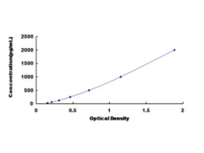 Bone Morphogenetic Protein 6 (BMP6) ELISA Kit