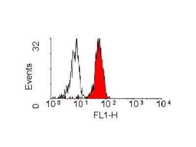 MOUSE ANTI HUMAN CD282:RPE