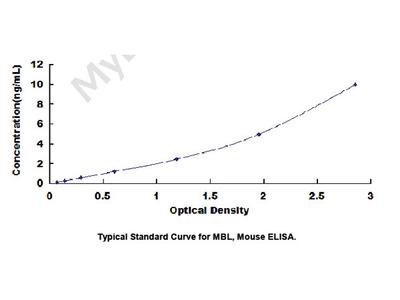Mannose Binding Lectin (MBL) ELISA Kit