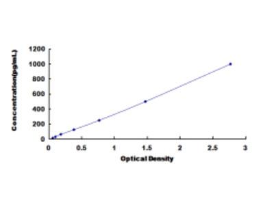 Heat Shock Protein Beta 2 (HSPb2) ELISA Kit
